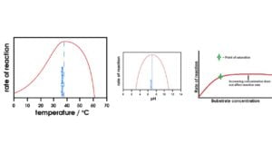 The Factors Affecting Enzyme Activity   Temperature, pH, Substrate